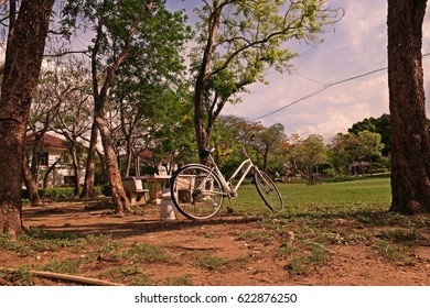 bicycle in park