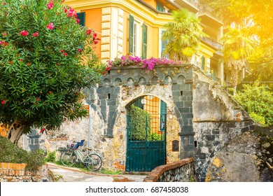 Bicycle parked on the street near entrance in villa covered by flowers, Italy. Cozy romantic old sunny street. Architecture and landmark. Postcard of Rome and Italy