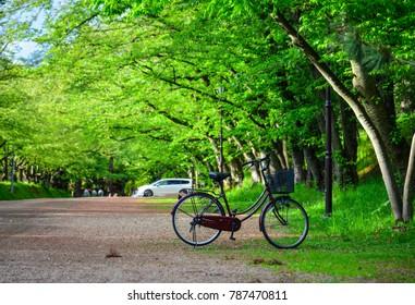 A bicycle parking at city park in Hirosaki, Japan.