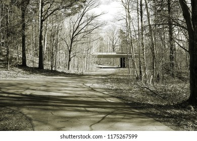 A bicycle path in the forest splits in different directions and a bridge is seen from afar.