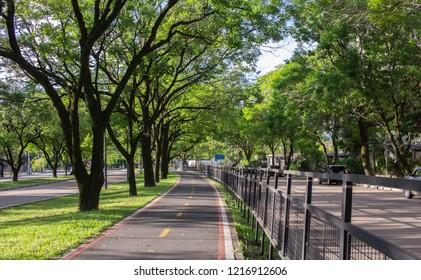 Bicycle path next to the bus corridor in Porto Alegre, Brazil