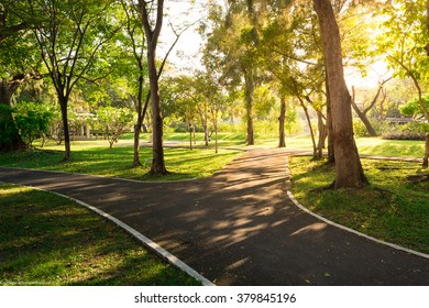 bicycle path in parks
