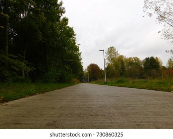 BICYCLE PATH SURROUNDED BY NATURE