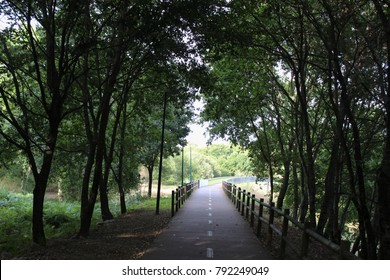 bicycle path in Viseu City Portugal
