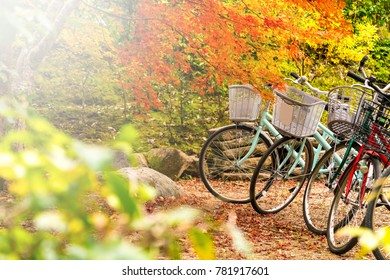 bicycle at the red maple tree, Japan autumn season.
