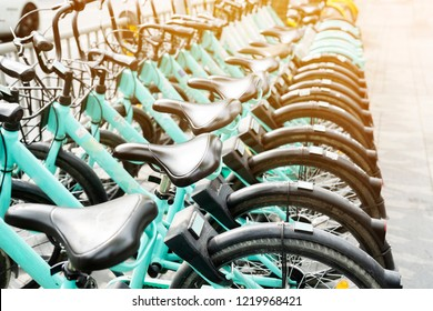 Bicycle rental service on city road parking with sunlight, public transportation concept.