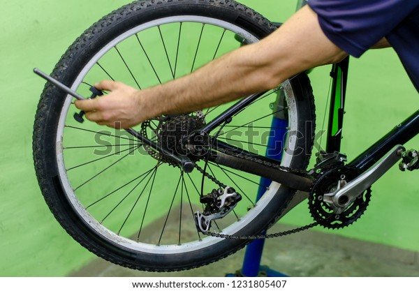 Bicycle Repair Mountain Bike Workshop Rear Stock Photo (Edit