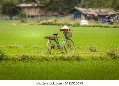 A bicycle in the rice fields of Mai Chau, Vietnam.