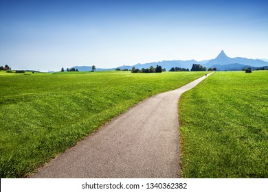 Bicycle road in green field to mountains, summer landscape