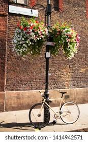 A bicycle is secured against a lamp post underneath a hanging basket of pretty flowers in the city.