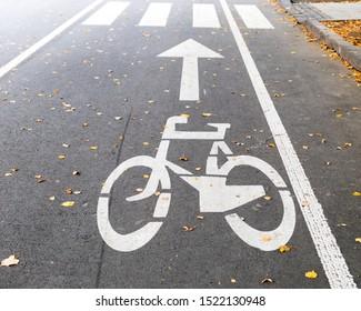 Bicycle sign on lane. Road marking. Bicycle lane