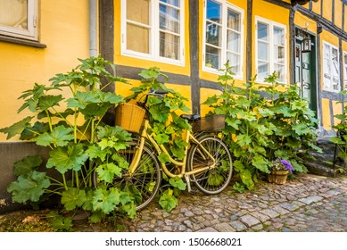 a bicycle standing at a house-wall and is overgrown by hollyhocks, Faaborg, Denmark, July 12, 2019