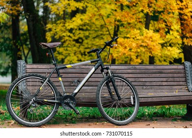 Bicycle standing near bench in colorful autumn park. Fall season background