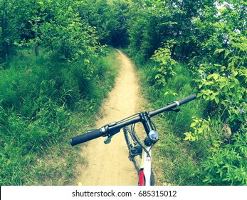 A bicycle stands on a dirt path in the forest. The concept of tourism, recreation. Copy space.
