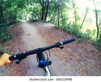 Bicycle steering wheel hand path forest trees green