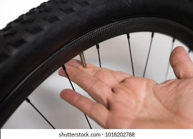 Bicycle tube repair. A hand of a person is deflating a presta valve on a mountain bike wheel.