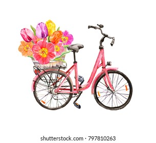 Bicycle with tulip flowers in basket. Watercolor for Amsterdam, Holland travel