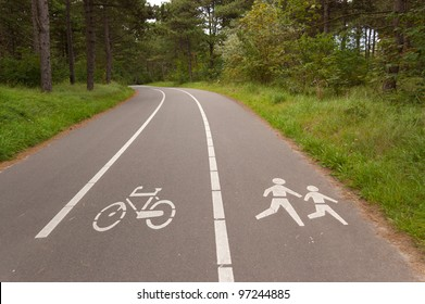 Bicycle and walking lane in forest. Outdoor sport, fitness and active healthy lifestyle concept