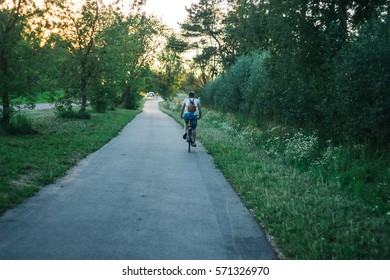 Bicycle and walking path in park
