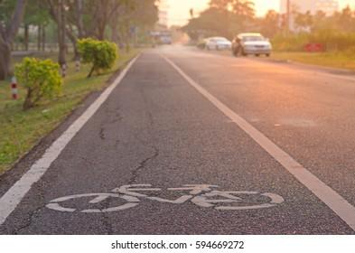 bicycle wayin the park