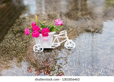 Bicycles carry a basket of flowers for greeting cards
