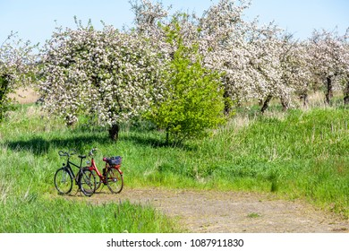 Bicycles in the region of Altes Land, Germany