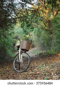 Bicycles for relaxation.  (focus at basket )