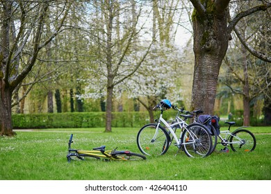 Bicycles and safety helmets under a tree in park on a spring day