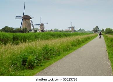 Bicyclist going along traditional dutch windmills. Kinderdijk, The Netherlands.