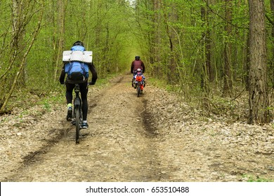 Bicyclists in Belovezhskaya Pushcha National Park, Belarus