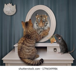 The biege cat stares his reflection in the mirror at home. He sees a tiger there. A black rat gives a gold crown to him.