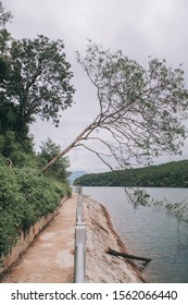 """Bien Ho (Sea Lake), a freshwater lake to the north of Pleiku City of Gia Lai Province, which is 900 meters above sea level and covers 230 hectares, is called the """"gem"""" of Pleiku."""
