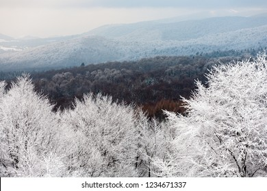 Bieszczady Mountains, Bieszczady National Park, Carpathians Mountains, Poland and Ukraine
