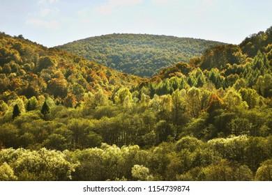 Bieszczady National Park near Wolosate village. Poland