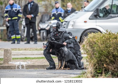 Bievre, FRANCE - OCTOBER 10, 2018 : A dog guided by laser from a drone piloted by the RAID, an elite tactical unit of the French National Police during a live exercise.