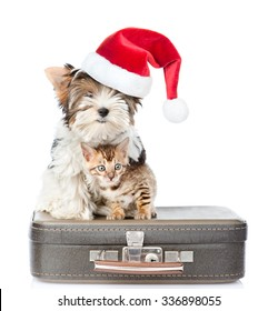 Biewer-Yorkshire terrier in red christmas hat and bengal cat sitting on a bag. isolated on white background