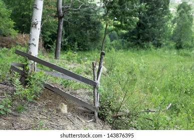 Big ant hill fenced with a fence. Summer landscape