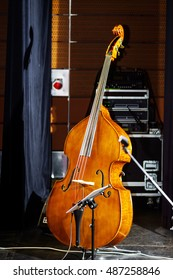 Big bass viol on the scene before the concert, music instruments