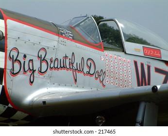 Big Beautiful Doll P51