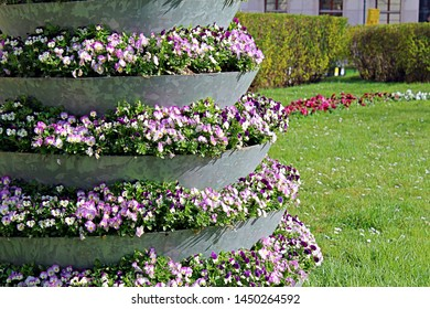 Big beautiful multi tiered flowerbed with colorful violet impatiens (walleriana). Beauty of the nature. Wallpaper with Busy Lizzie.