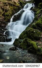 Big beautiful winter waterfall flowing cascade in the mountains, deep in the old deciduous and pine conifers mixed forest. Amazing green moss over the cliff and every rock. Long exposure photography