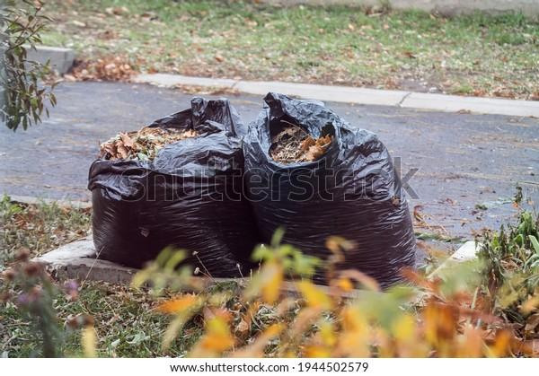 big-black-plastic-garbage-bags-600w-1944