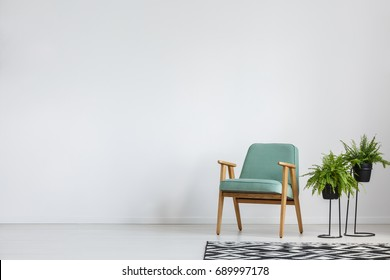 Big black and white carpet in room with plants and armchair