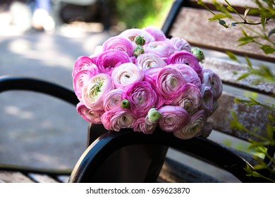 Big bouquet of beautiful pink ranunculus. Composition for a romance or anniversary
