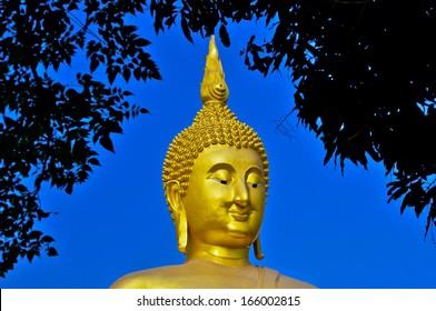 The Big Buddha under tree frame  at Wat Muang Temple Angthong Thailand