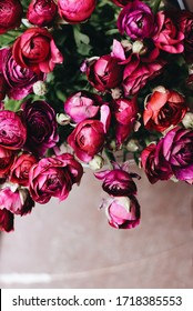 Big bunch of beautiful ranunculus flowers in colors of wine marsala red, fuchsia, magenta pink and purple. Brown floor on the blurry background. Space for copy.
