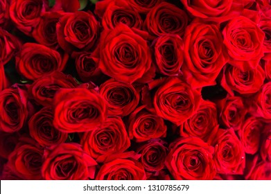 Big bunch of fresh dark red roses in bouquete close up texture background