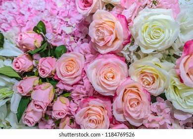 Pink roses background images stock photos vectors shutterstock big bunch of multiple pink roses from top of floral backgrounds series mightylinksfo