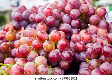 Big bunch of red wine grapes on market, Fresh new red wine grapes, group of fruit, red grapes from farm