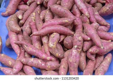 Big Bunch of Sweet Potato at Market